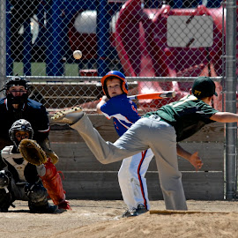 The Pitch by Robert Remacle - Sports & Fitness Baseball