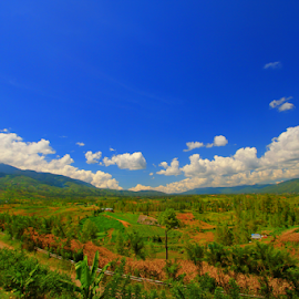 gayo Lues landscape by Dt Borneo - Landscapes Travel ( national park, mountains, aceh, leuser, indonesia )