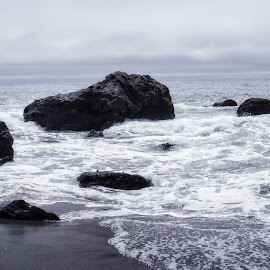 Bodega Bay by Tammy Arruda - Landscapes Beaches