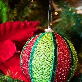 Red and green christmas ball by Scott Thomas - Artistic Objects Other Objects ( orniment, red, green, christmas, christmas tree )