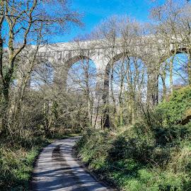 Treffry Viaduct  by Jolyon Vincent - Buildings & Architecture Bridges & Suspended Structures