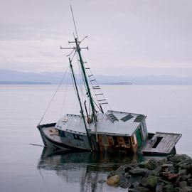 Boat wreck by Janet Gilmour-Baker - Transportation Boats ( shipwreck, wreck, ship, vancouver island, boats, boat wreck, transportation, boat, campbell river )