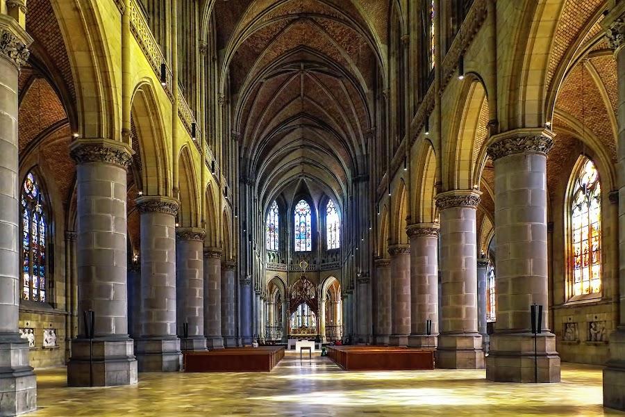 Der Mariendom, Linz by Tomasz Marciniak - Buildings & Architecture Places of Worship
