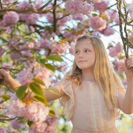 My little blossom by Estelle Hughes - Babies & Children Child Portraits ( spring, pink, blossom, tree, girl,  )