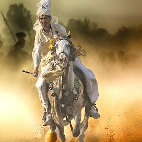AD by Abdul Rehman - Sports & Fitness Rodeo/Bull Riding ( natural light, sand, pakistan, multan, adventure, horse back, thrilling, dangerous sport, dust, horse, angry, sun light, dangerous,  )