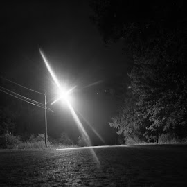 Lonely Light by Kevin Greek - Novices Only Landscapes ( streetlight, tree, empty, night, road )