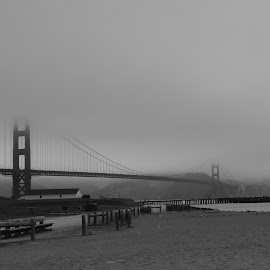 Golden Gate Bridge by Marie Brown-Serrazina - Buildings & Architecture Bridges & Suspended Structures ( #landscape, #bridge, goldengate, #blackandwhite )