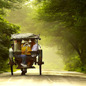 Horse drawn buggy by Muhasrul Zubir - Transportation Other