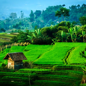 The Saunger by Ridwan Adhitama - Landscapes Mountains & Hills ( mountains, saung, sawah, landscape )