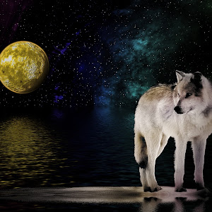 WolfMoon2.jpg