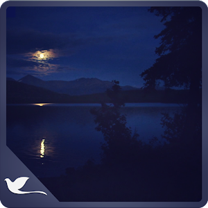 Cover art Romantic night at lake