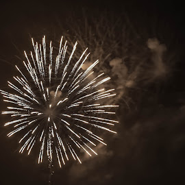 White Burst by Pat Lasley - Abstract Fire & Fireworks ( explosions, fourth of july, fireworks display, celebrations, bursts, white, fireworks,  )