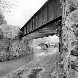 Tallybont Canal Bridges by Mark Collins - Buildings & Architecture Bridges & Suspended Structures ( railway, wales, tallybont, bridge, powys, canal )