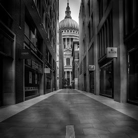 THE CATHEDRAL  by Selaru Ovidiu - City,  Street & Park  Historic Districts ( arhitecture, london, bw )