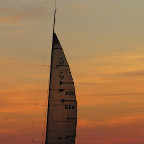 Sailing At Sunset by Diane Butler - Transportation Boats ( boating, sailing, sunset, lake, sailboat )