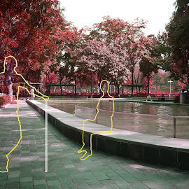 Victoria Park by Nick Hopton - Digital Art Places ( hong kong, victoria park, red leaves, line people, sunny day )