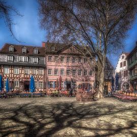 Schlossplatz by Ole Steffensen - City,  Street & Park  Neighborhoods ( hessen, half-timbered houses, reflections, germany, frankfurt-höchst, schlossplatz, restaurants )