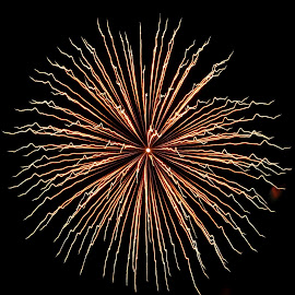 one by Savannah Eubanks - Abstract Fire & Fireworks ( fireworks, night )