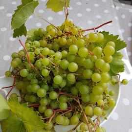 by Ulrica Kraft - Food & Drink Fruits & Vegetables