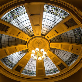 Bodega Dome by Adam Lang - Artistic Objects Other Objects ( lights, ceiling, dome, windows, circle )