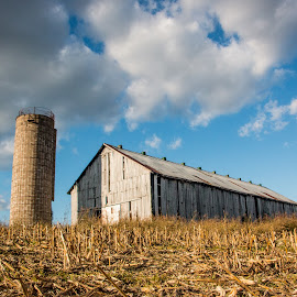by Erin Schwartzkopf - Buildings & Architecture Other Exteriors ( farm, barn, old barn, farm building, barns )
