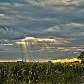sun breaking through by Barbara Springer - Landscapes Cloud Formations ( clouds, nature, weather, ray of sun, landscape )