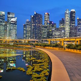 Marina Bay by Koh Chip Whye - City,  Street & Park  City Parks