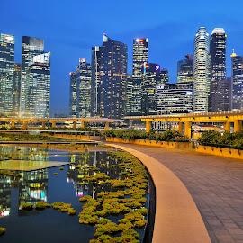 Marina Bay by Koh Chip Whye - City,  Street & Park  City Parks (  )