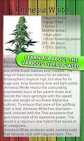 Screenshot of MyWeed - Grow Marijuana