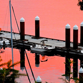 Salish Sea Sunrise III by Campbell McCubbin - Buildings & Architecture Bridges & Suspended Structures ( marina, sunrise, pink, dawn, boats, pilings )