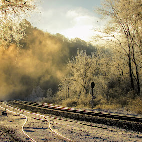 Frigid Morning by Rick Covert - Landscapes Weather ( railroad tracks, winter, fog, ice, snow, frost, sunrise, morning, arkansas )