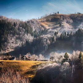 Magic light by Mikaela Dana - Landscapes Mountains & Hills ( hills, magic, mountain, village, autumn, beautiful, trees, light )