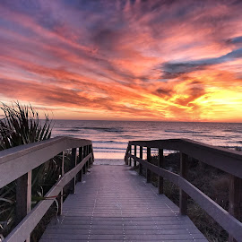 Sunset Beach by Tammi Reeves - Landscapes Beaches