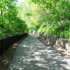 Janesville River Segment (Walk) by Kathy Kehl - City,  Street & Park  City Parks ( janesville, park, riverside, parks, city park, rivers, pretty, river walk, river )