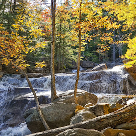 by Mark Wirzburger - Landscapes Waterscapes ( bartlett nh, diana's bath, fall colors )