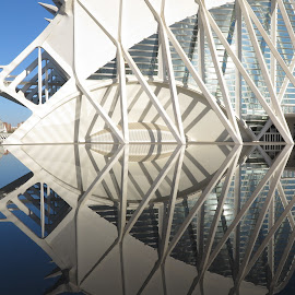 Science Museum, Valencia by Luis Felipe Moreno Vázquez - Abstract Patterns ( water, buildings, reflections, architecture, valencia, museum, spain, calatrava, science )