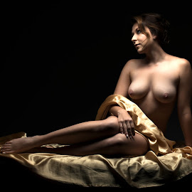 Nude in Gold by Peter Driessel - Nudes & Boudoir Artistic Nude