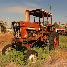 Antique abandoned tractor by Ron Olivier - Transportation Other ( antique abandoned tractor )