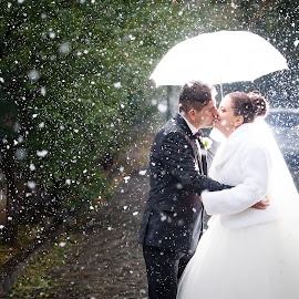 Snow by Arici Ciprian Claudiu - Wedding Bride & Groom ( fotograf nunta, fotograf botez )