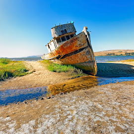 Point Reyes Derelict by Robert Petrocelli - Transportation Boats ( wreck, boat, decay )