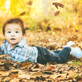 Leaves by Jenny Hammer - Babies & Children Babies ( fall, leaves, baby, boy, cute )