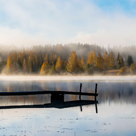pier by Marko Paakkanen - Landscapes Waterscapes ( tranquil, foggy, nature, pier, lake, forest, landscape, morning, mist )