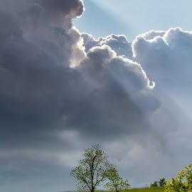 Storm Rolling In by Kevin Frick - Landscapes Weather ( field, clouds, west virginia, god rays, trees )