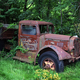 Retired Workhorse by Monroe Phillips - Transportation Other