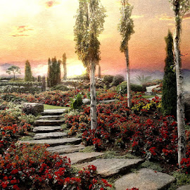 Eden by Bjørn Borge-Lunde - Digital Art Places ( clouds, stairs, nature, park, bushes, sunset, plants, trees, flowers, garden, skies )