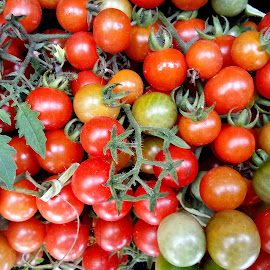 Tomatoes  by Asif Bora - Instagram & Mobile Other (  )