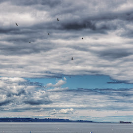 by Todd Reynolds - Landscapes Cloud Formations