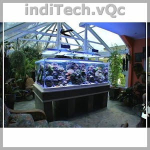 Download Aquarium Ideas for Windows Phone