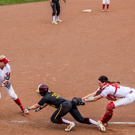 Tagged out in a rundown by Jason Lockhart - Sports & Fitness Baseball ( softball, rundown, big ten, wisconsin badgers, goodman softball complex, put out )