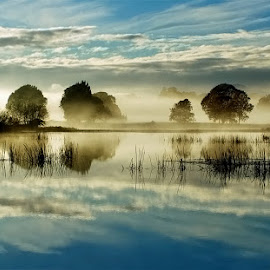 Morning on the Lake by Phillip Minnis - Landscapes Waterscapes ( water, trees, reflections, lake, sunrise, morning,  )